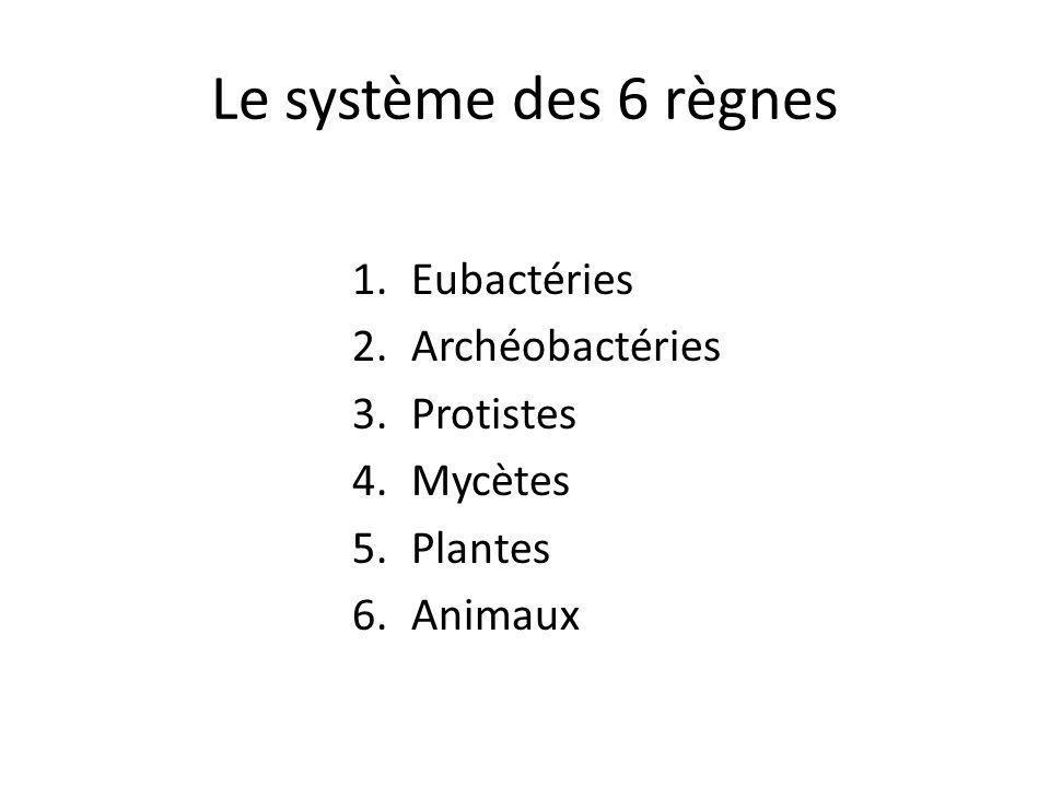 Le système des 6 règnes Eubactéries Archéobactéries Protistes Mycètes