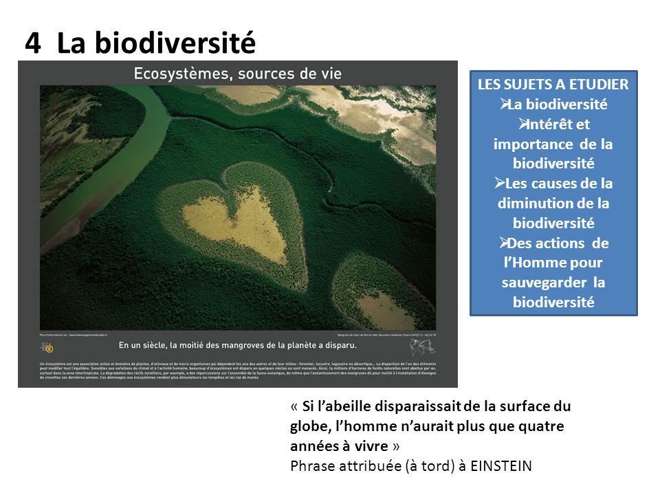 4 La biodiversité LES SUJETS A ETUDIER La biodiversité