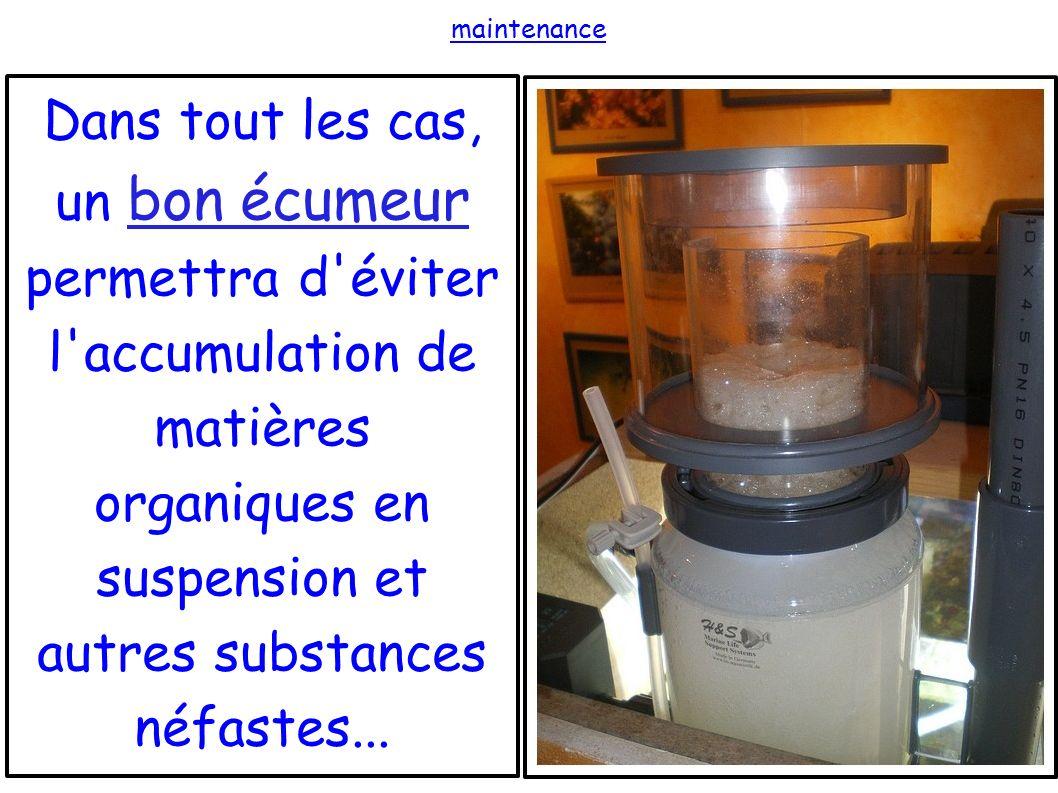 maintenance Dans tout les cas, un bon écumeur permettra d éviter l accumulation de matières organiques en suspension et autres substances néfastes...