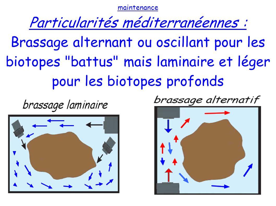Particularités méditerranéennes :