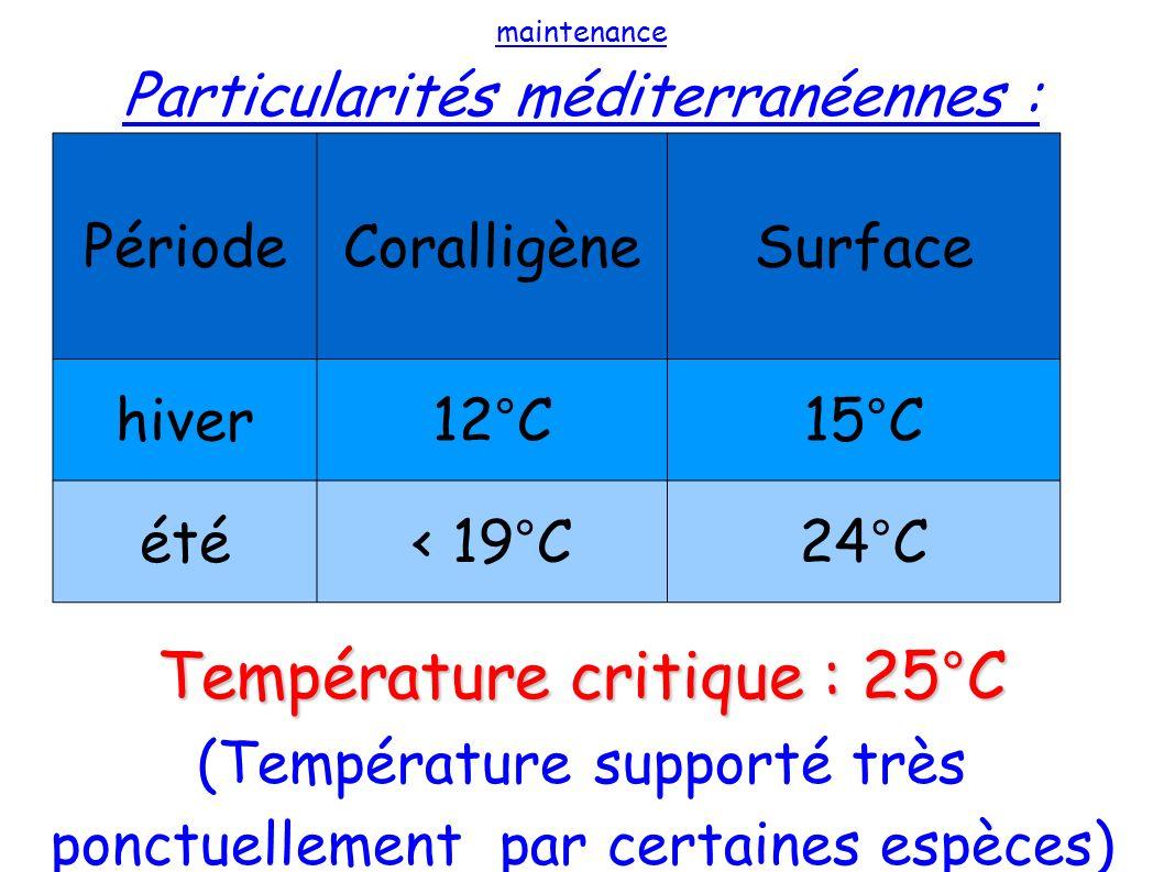 Température critique : 25°C