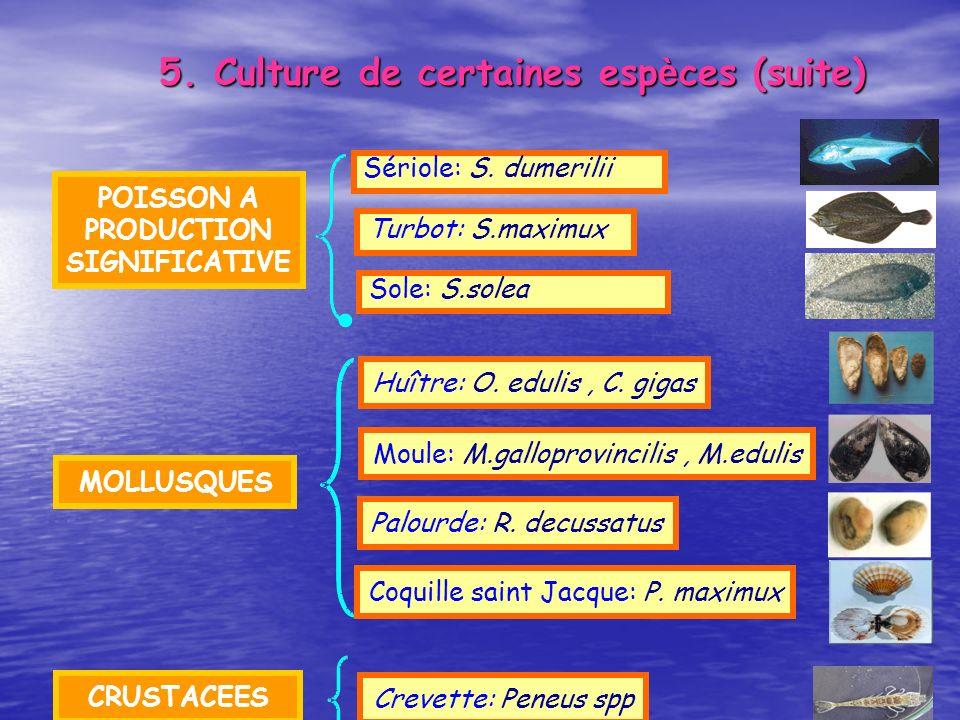 5. Culture de certaines espèces (suite)