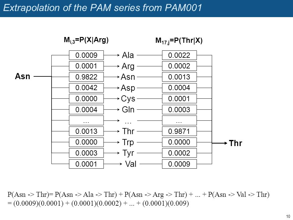 Extrapolation of the PAM series from PAM001