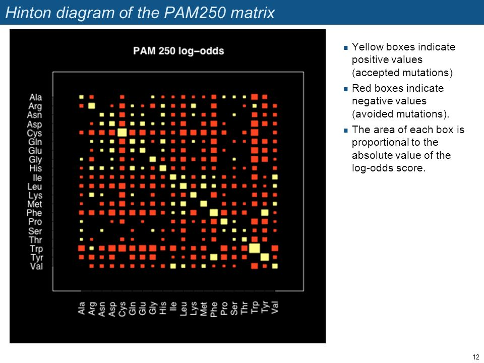 Hinton diagram of the PAM250 matrix