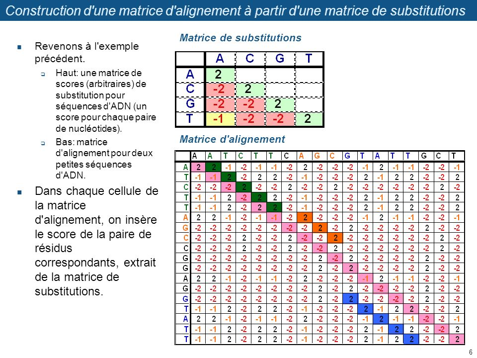 Construction d une matrice d alignement à partir d une matrice de substitutions