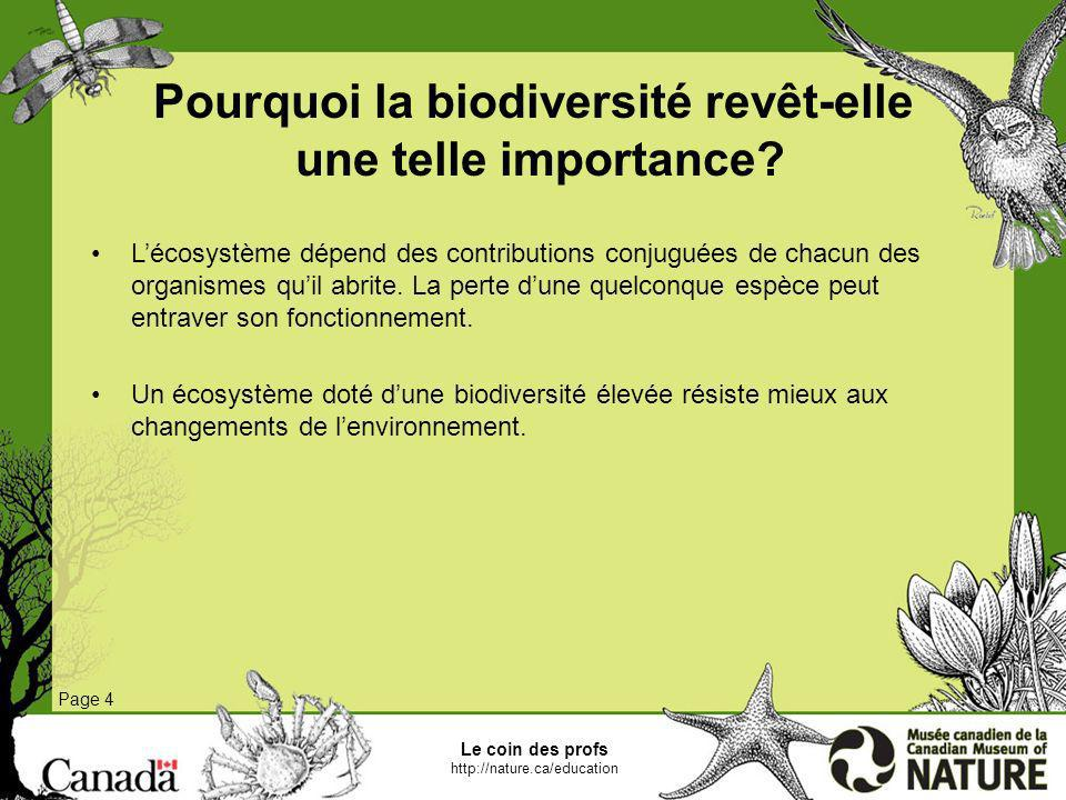 Pourquoi la biodiversité revêt-elle une telle importance