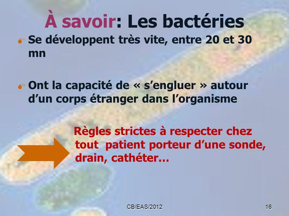 À savoir: Les bactéries