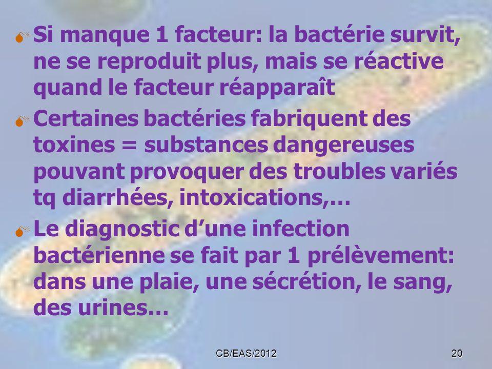 Si manque 1 facteur: la bactérie survit, ne se reproduit plus, mais se réactive quand le facteur réapparaît