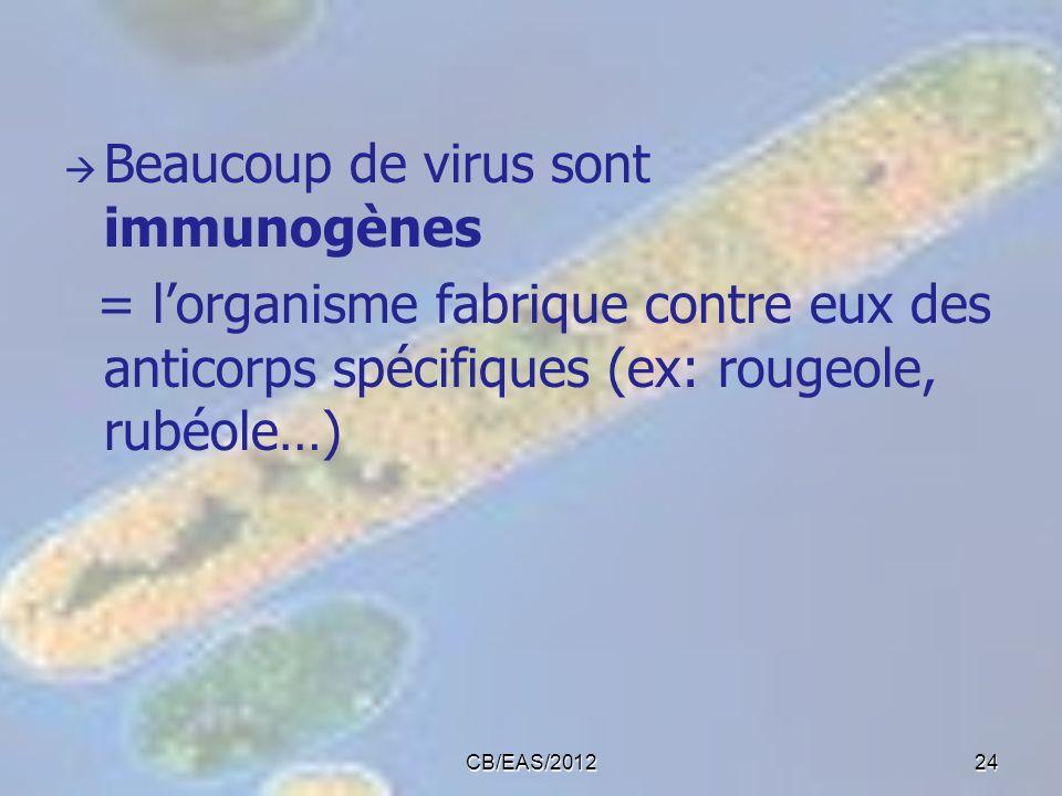 Beaucoup de virus sont immunogènes