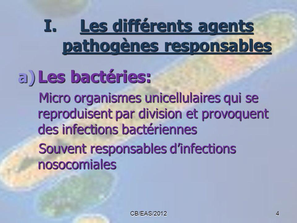Les différents agents pathogènes responsables