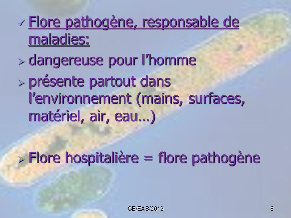 Flore pathogène, responsable de maladies: dangereuse pour l'homme