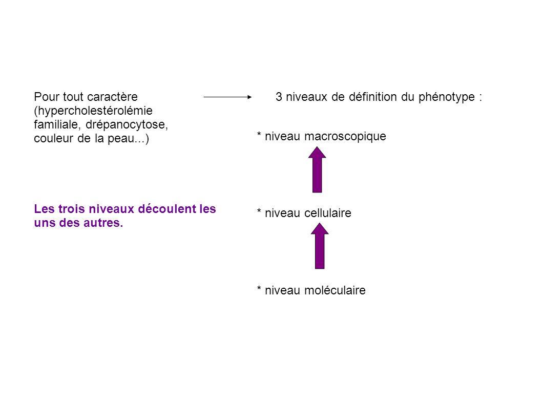 Pour tout caractère (hypercholestérolémie familiale, drépanocytose, couleur de la peau...) 3 niveaux de définition du phénotype :