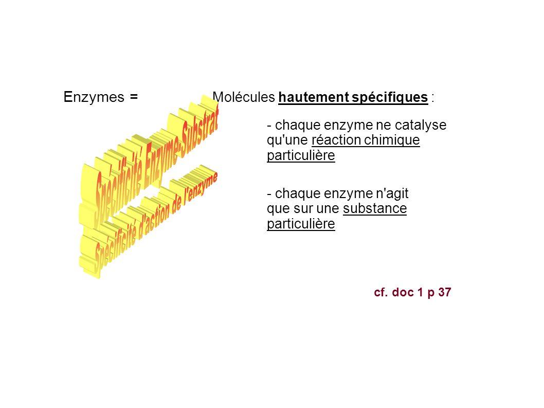 Spécificité Enzyme-Substrat