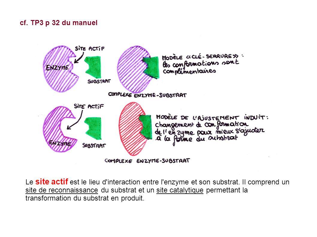 cf. TP3 p 32 du manuel