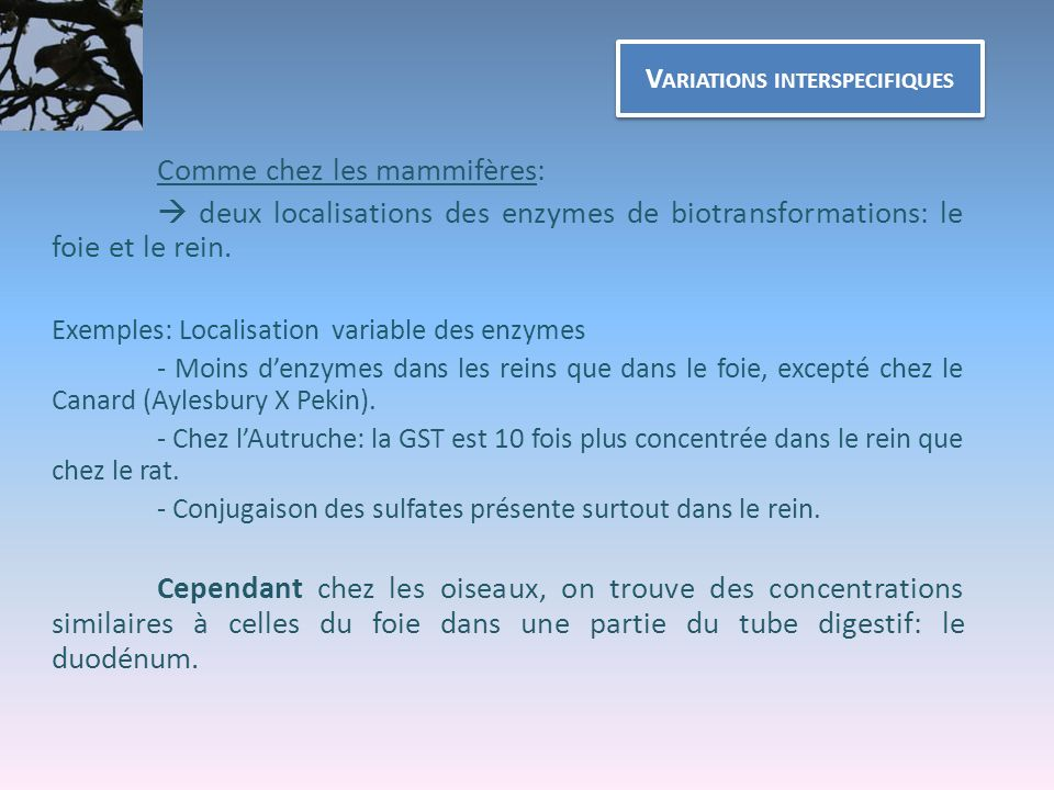 Variations interspecifiques