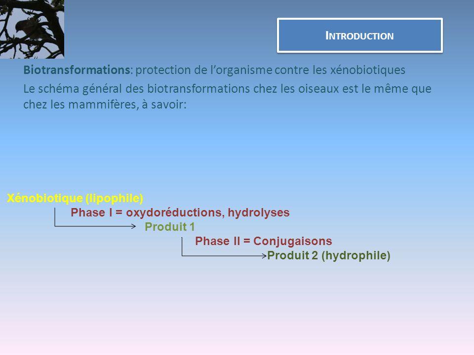 Biotransformations: protection de l'organisme contre les xénobiotiques