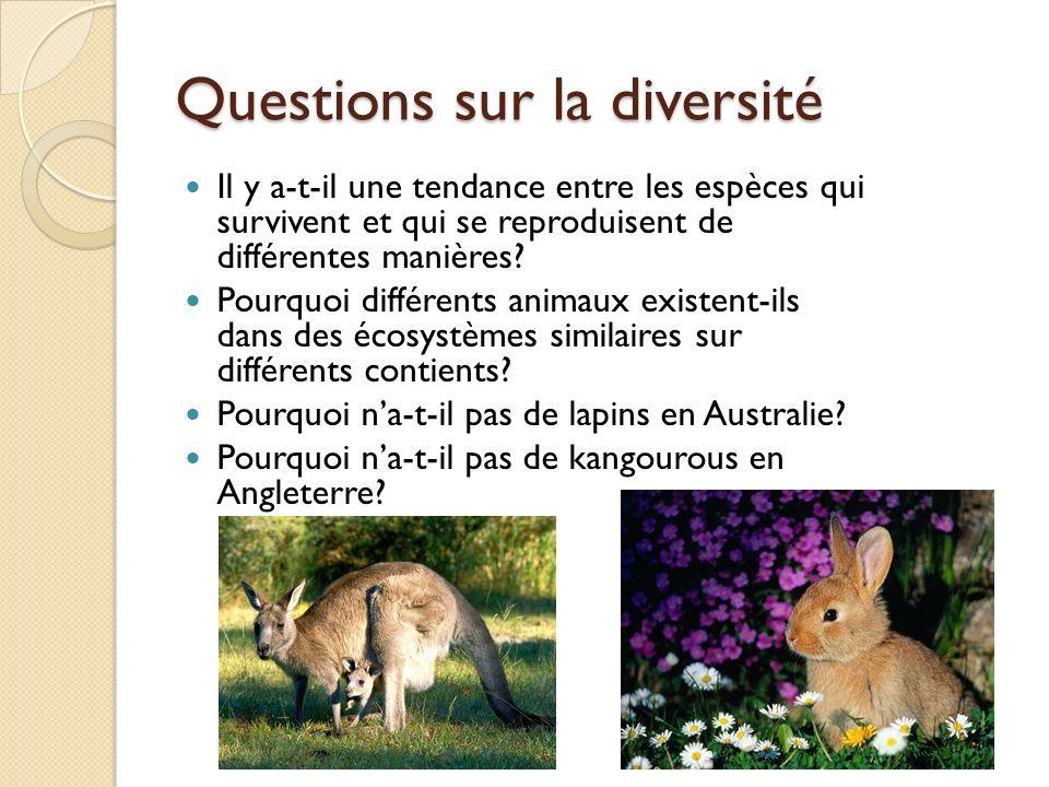 Questions sur la diversité
