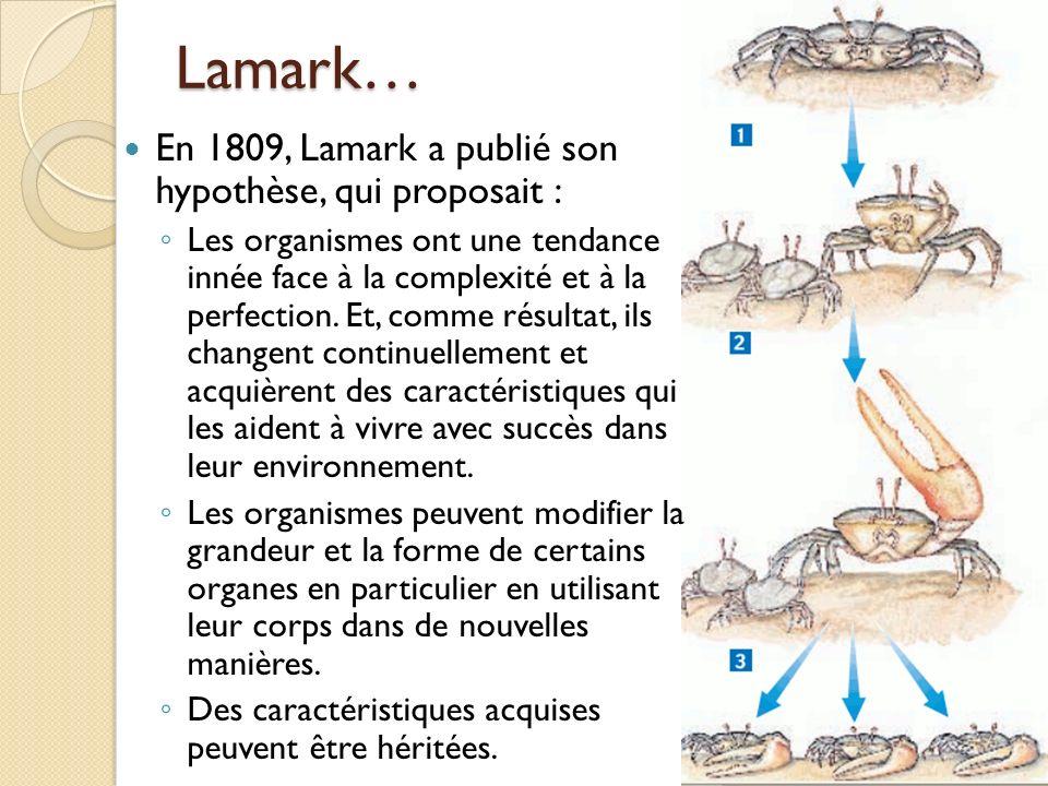 Lamark… En 1809, Lamark a publié son hypothèse, qui proposait :