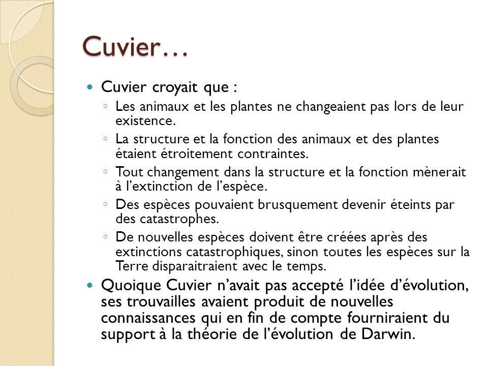 Cuvier… Cuvier croyait que :