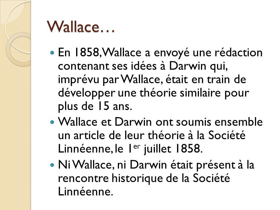 Wallace…