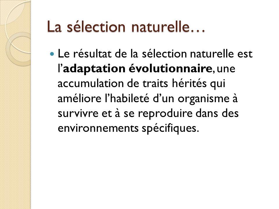 La sélection naturelle…