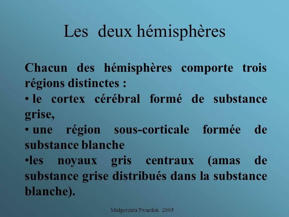 Les deux hémisphères Chacun des hémisphères comporte trois régions distinctes : le cortex cérébral formé de substance grise,