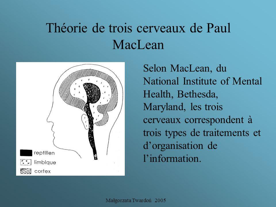 Théorie de trois cerveaux de Paul MacLean