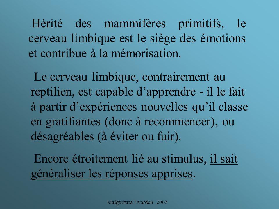 Hérité des mammifères primitifs, le cerveau limbique est le siège des émotions et contribue à la mémorisation.