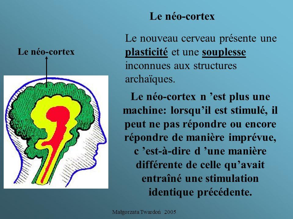 Le néo-cortex Le nouveau cerveau présente une plasticité et une souplesse inconnues aux structures archaïques.