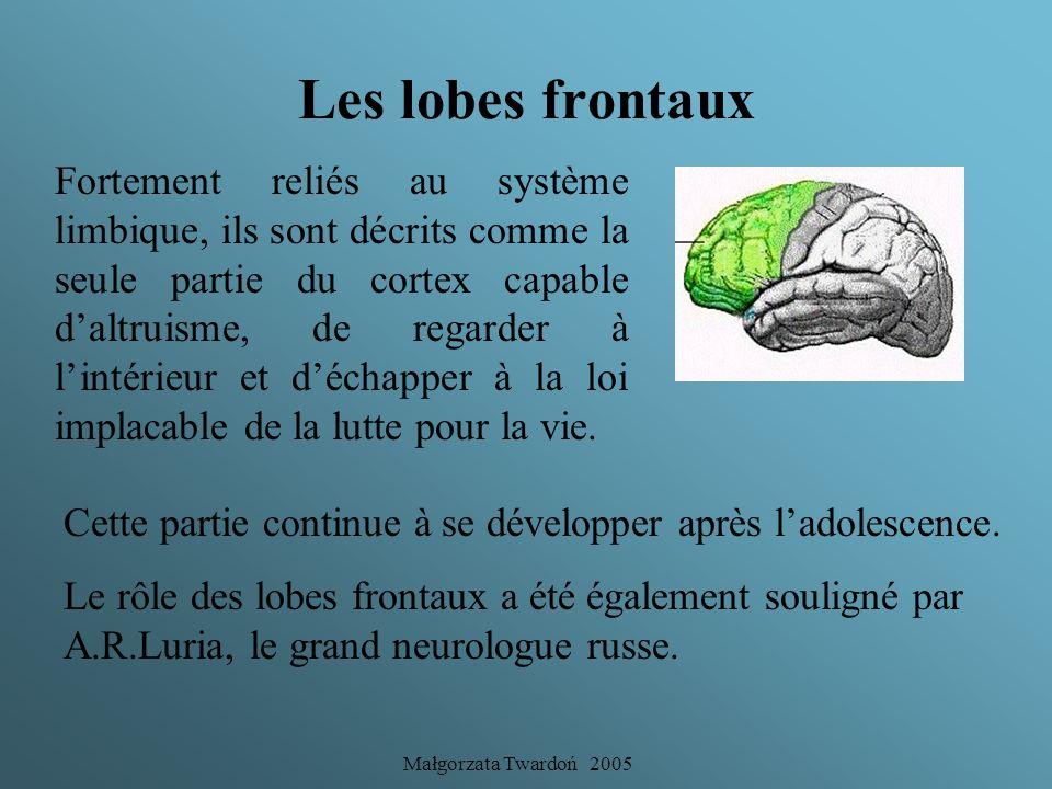 Les lobes frontaux