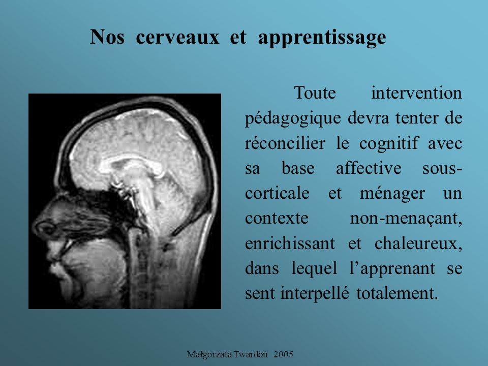 Nos cerveaux et apprentissage