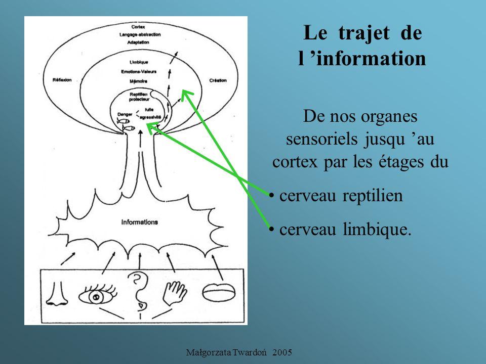 Le trajet de l 'information