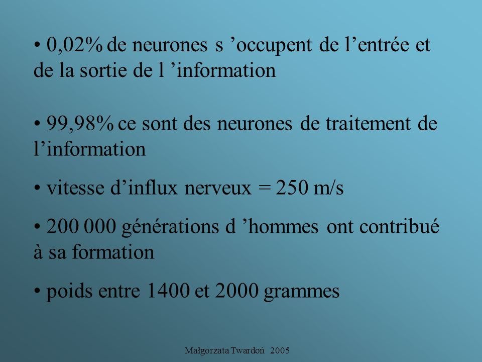 99,98% ce sont des neurones de traitement de l'information