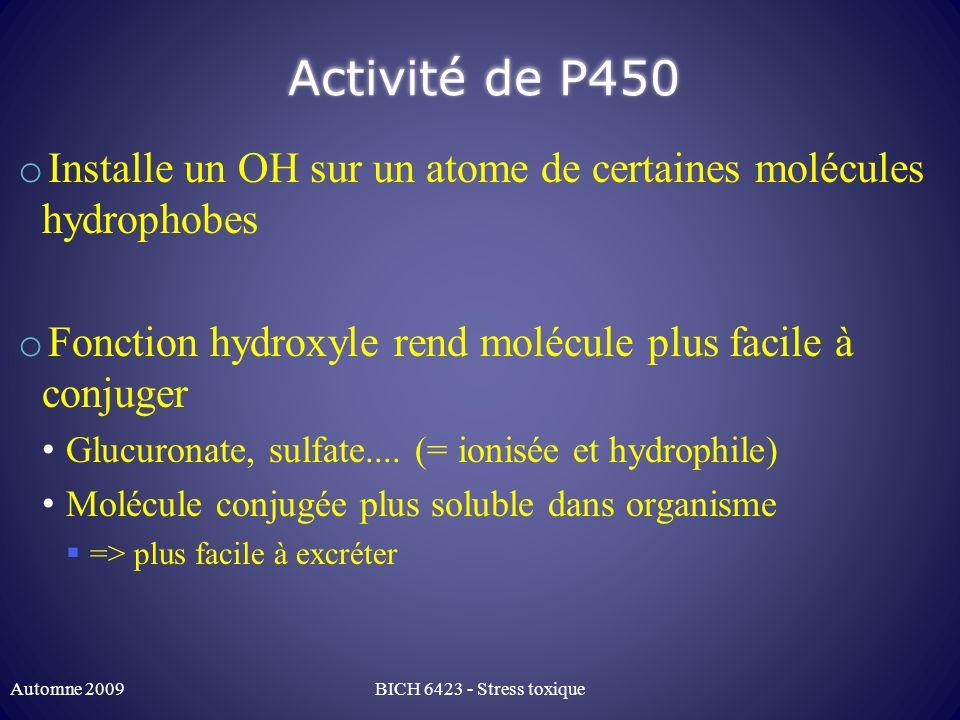 Activité de P450 Installe un OH sur un atome de certaines molécules hydrophobes. Fonction hydroxyle rend molécule plus facile à conjuger.