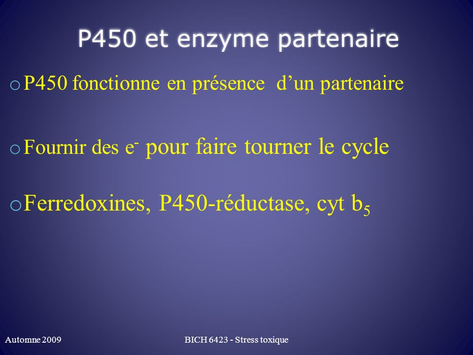 Ferredoxines, P450-réductase, cyt b5