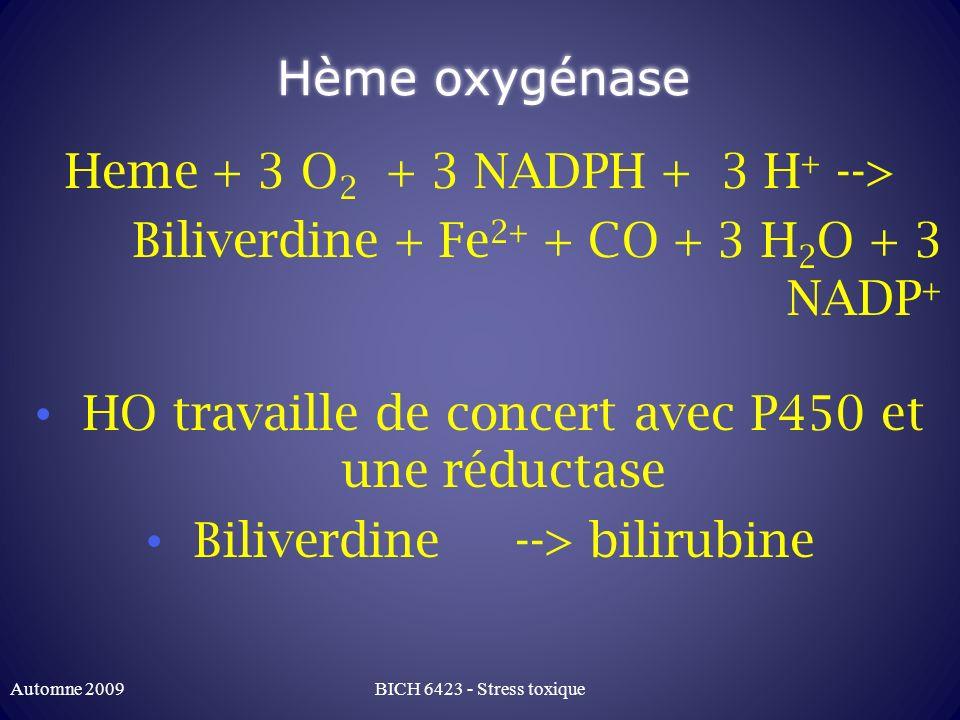 Heme + 3 O2 + 3 NADPH + 3 H+ -->