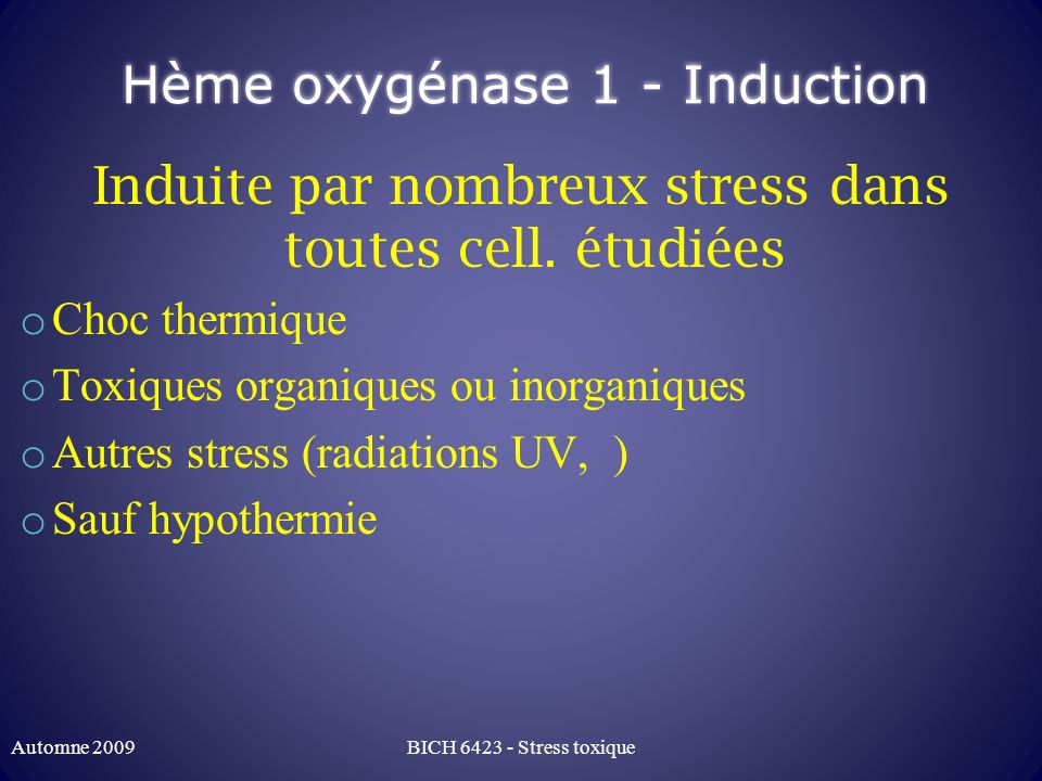 Hème oxygénase 1 - Induction