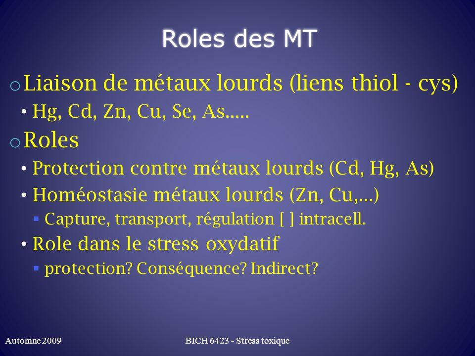 Roles des MT Liaison de métaux lourds (liens thiol - cys) Roles