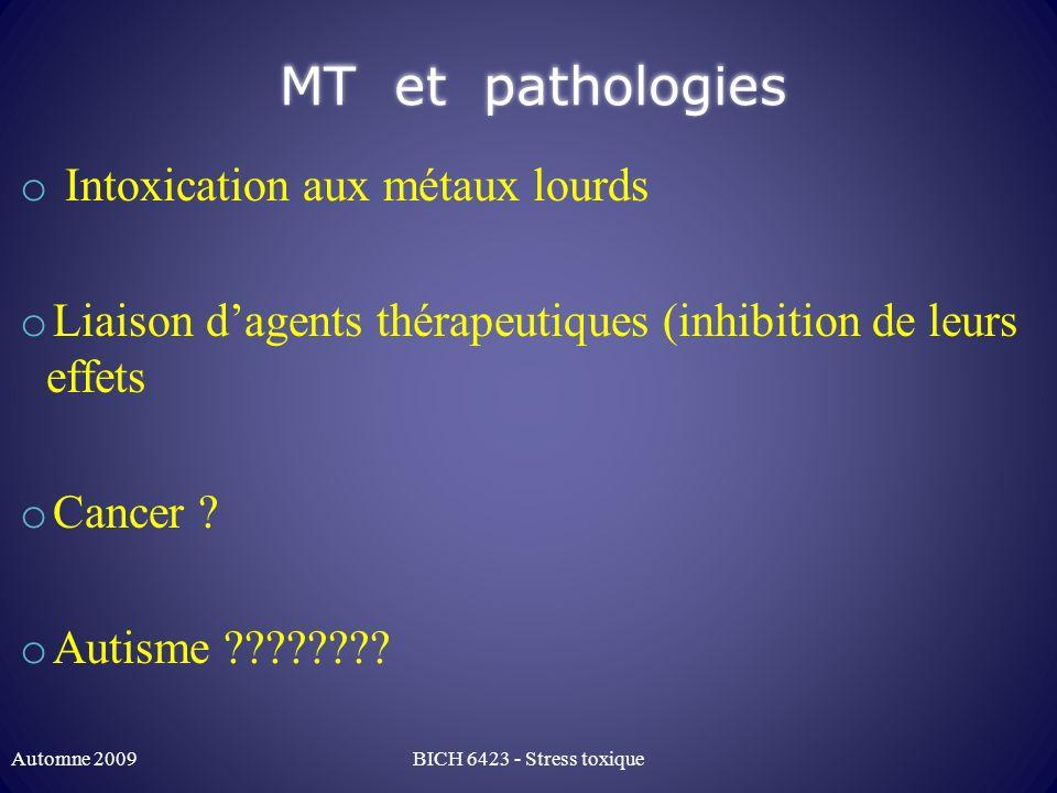 MT et pathologies Intoxication aux métaux lourds
