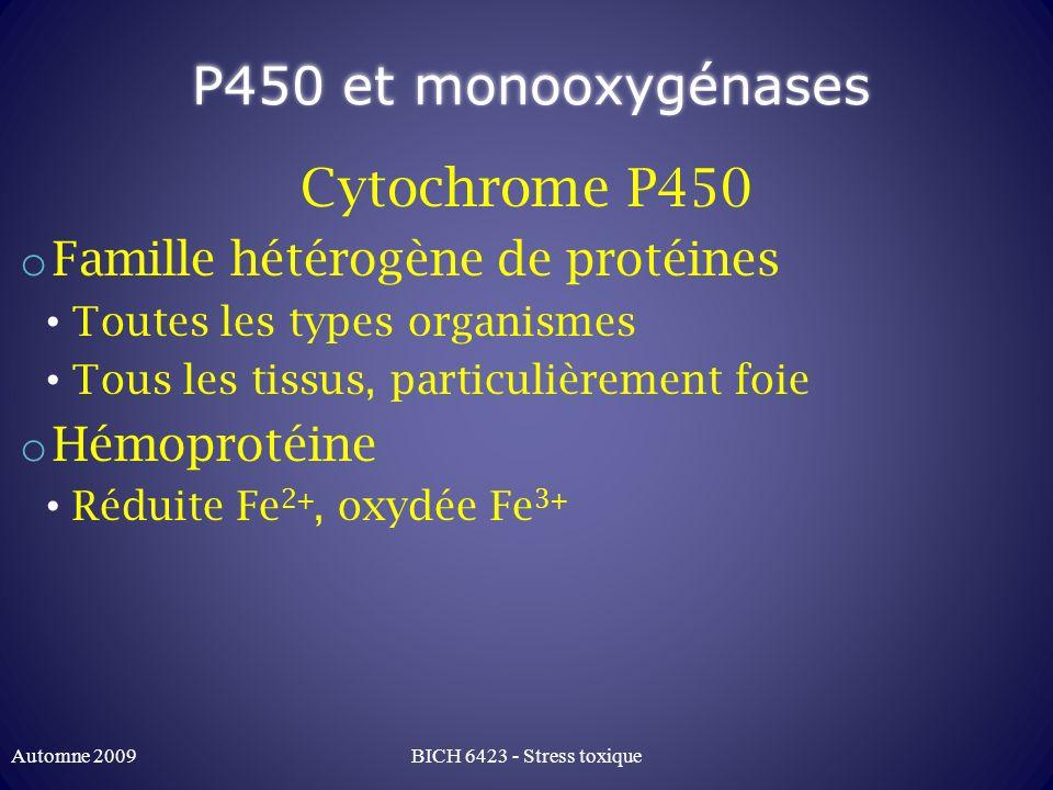 P450 et monooxygénases Cytochrome P450 Famille hétérogène de protéines