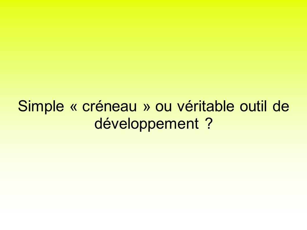 Simple « créneau » ou véritable outil de développement