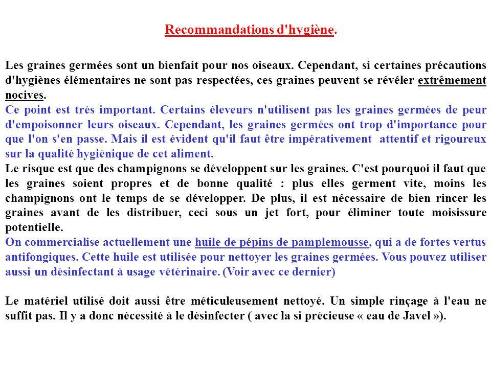 Recommandations d hygiène.