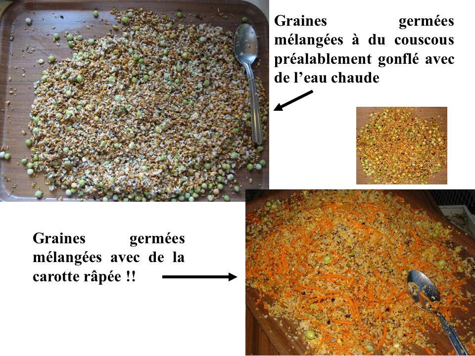Graines germées mélangées à du couscous préalablement gonflé avec de l'eau chaude