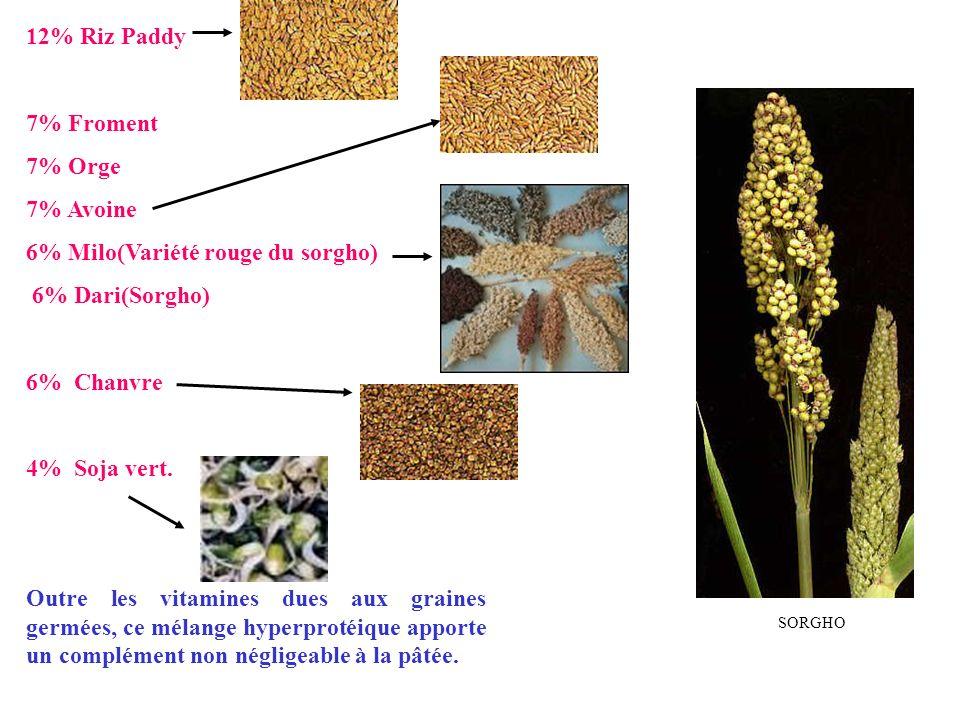 6% Milo(Variété rouge du sorgho) 6% Dari(Sorgho)