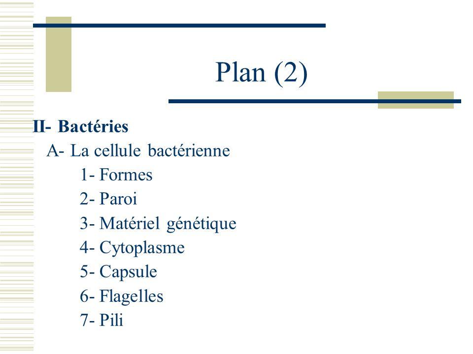 Plan (2) II- Bactéries A- La cellule bactérienne 1- Formes 2- Paroi