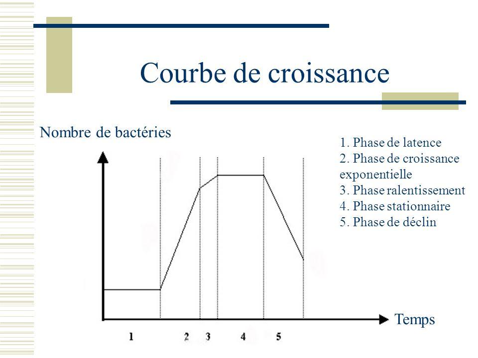 Courbe de croissance Nombre de bactéries Temps 1. Phase de latence