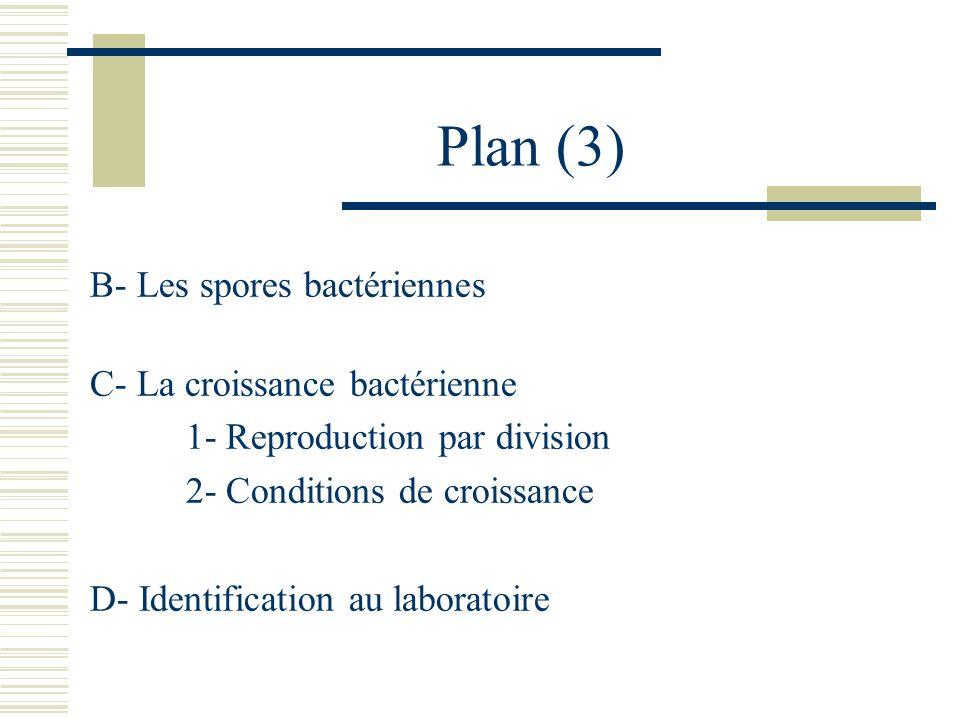 Plan (3) B- Les spores bactériennes C- La croissance bactérienne