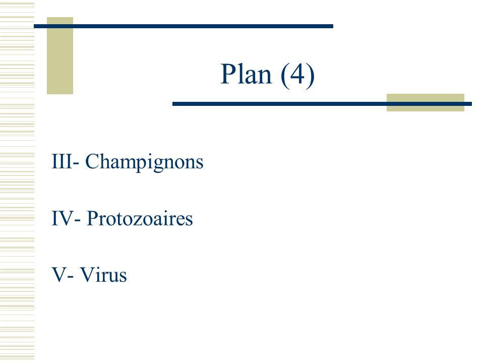 Plan (4) III- Champignons IV- Protozoaires V- Virus