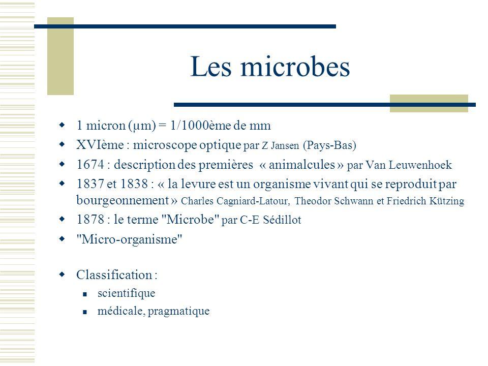 Les microbes 1 micron (µm) = 1/1000ème de mm