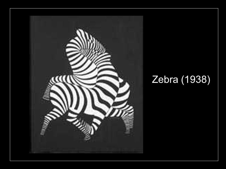 Zebra (1938)